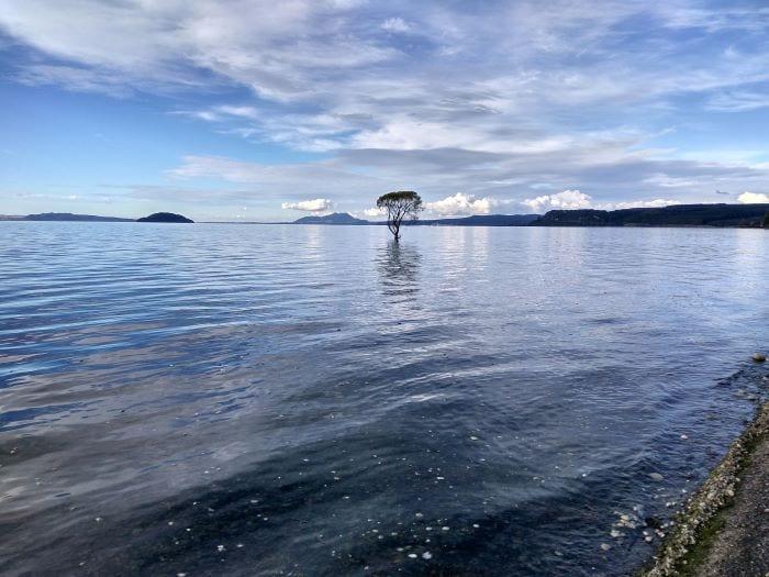 Самое большое пресноводное озеро Южной части  Тихого океана