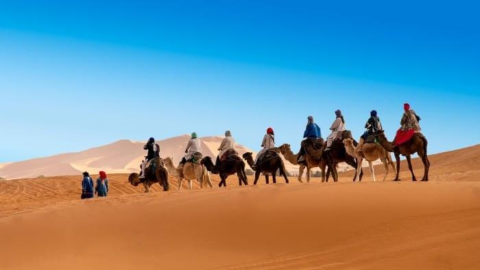 Прогулка на верблюдах по пустыне Сахара