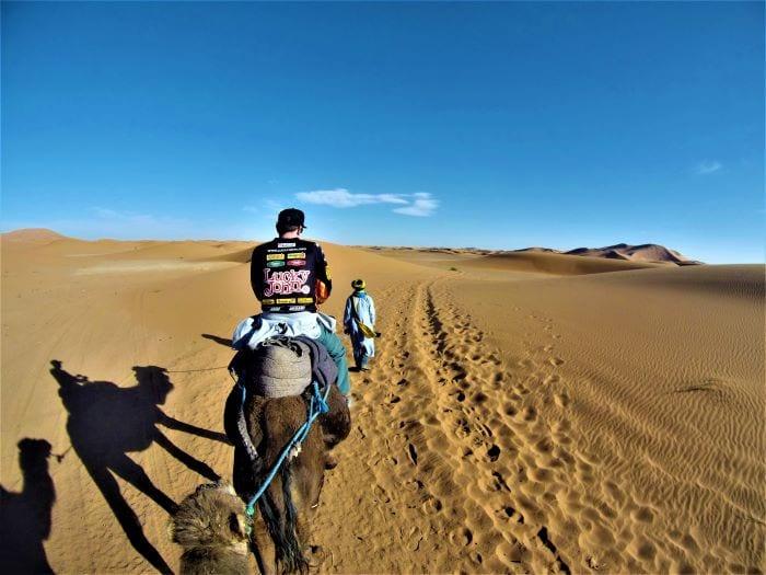 Катание на верблюдах в Марокко