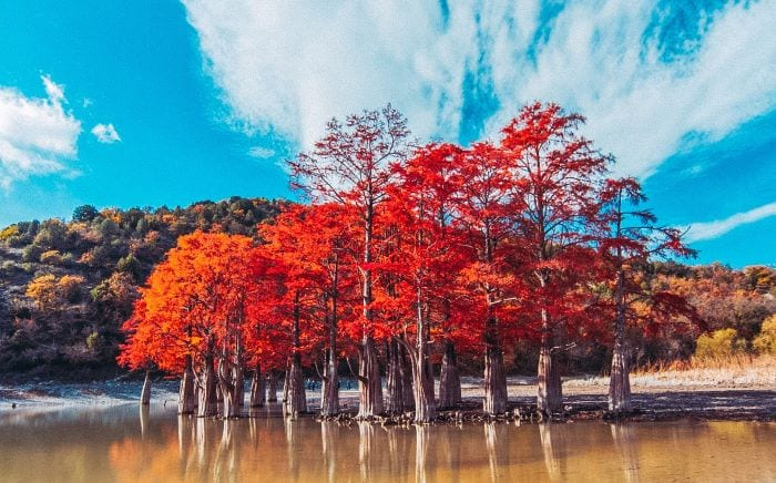 Кипарисовое озеро Сукко Анапа