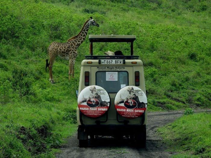 Сафари тур по Танзании