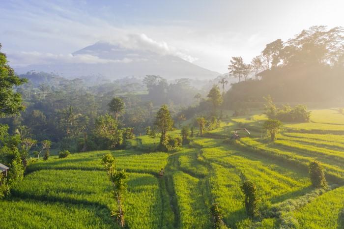 Cезон дождей на Бали: стоит ли ехать?